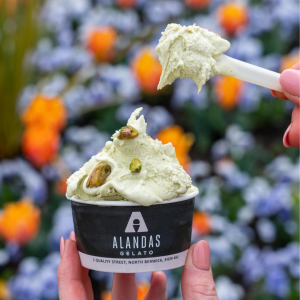 AndMunch street food guide ; East Coast - The AlandasGroup, gelato